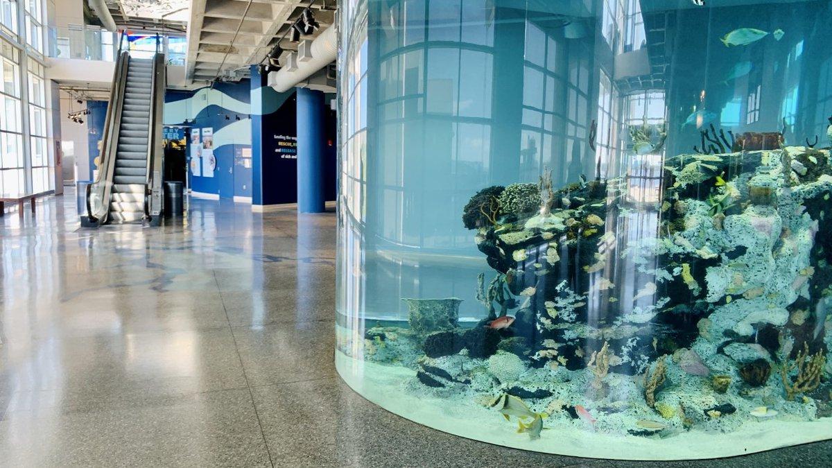 SC Aquarium reopened