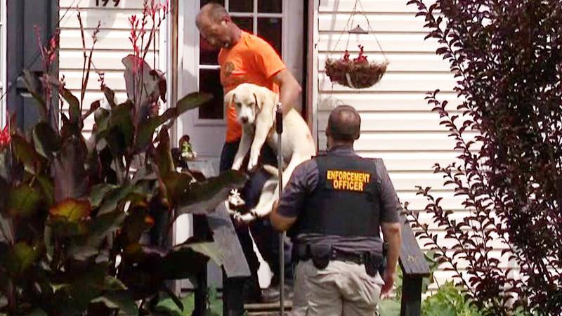 A dog is removed from an Aiken County home on June 23, 2021, after a woman was injured in an...