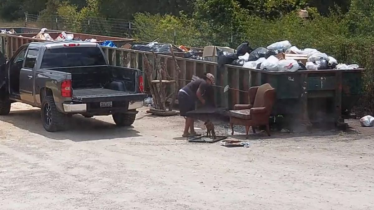 The Screven County Sheriff's Office released this image from video that authorities say shows someone abandoning a doig.