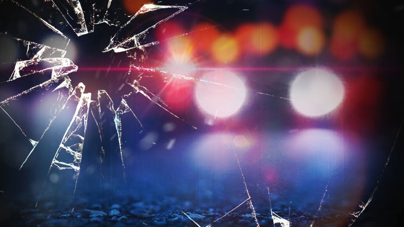 The South Carolina Highway Patrol is investigating a single-vehicle collision that killed one...