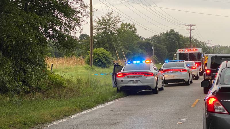 SILVER BLUFF ROAD ACCIDENT