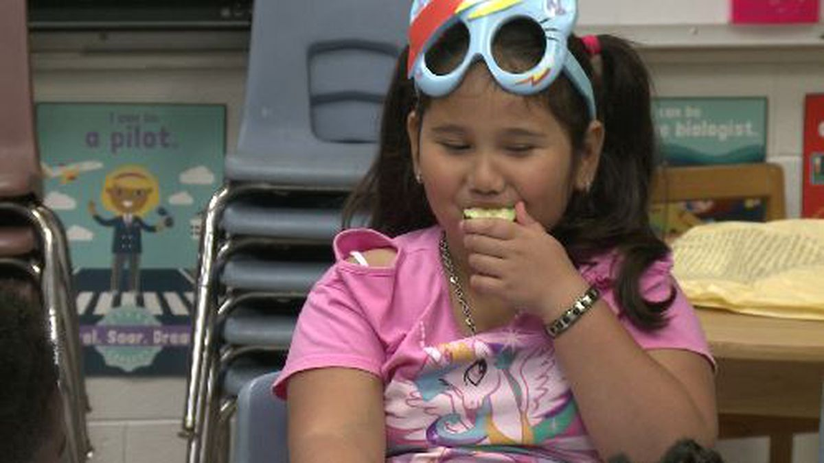 Goshen Elementary students celebrate Agriculture Day (Source: WRDW/WAGT)