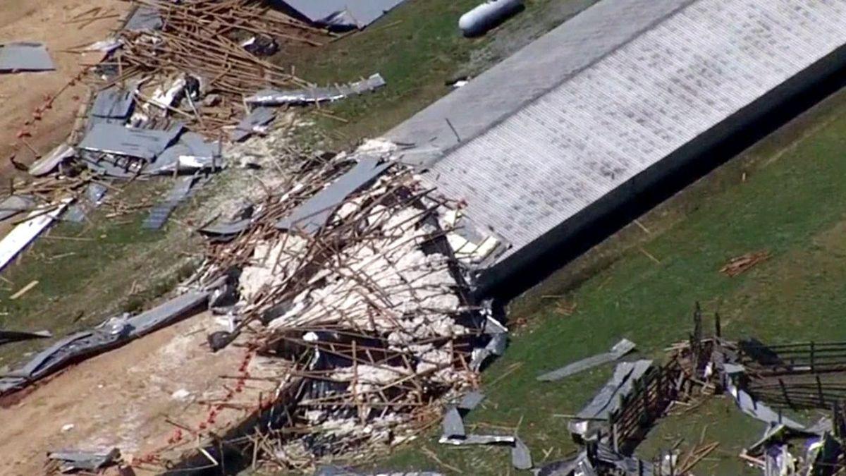 A South Carolina tornado caused this damage and killed 4,000 turkeys at a family farm on April...
