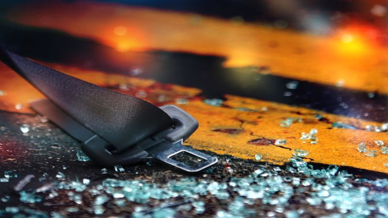 The South Carolina Highway Patrol is investigating a fatal collision in Aiken County that left...