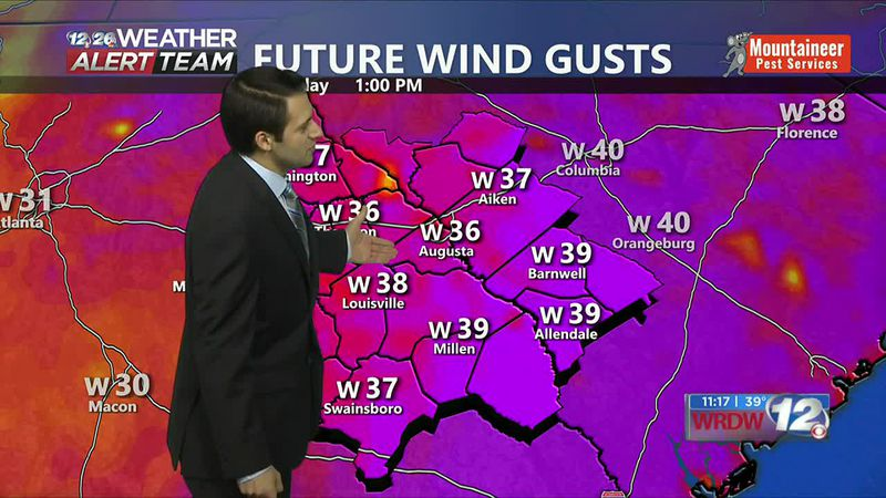 Future Wind Gusts