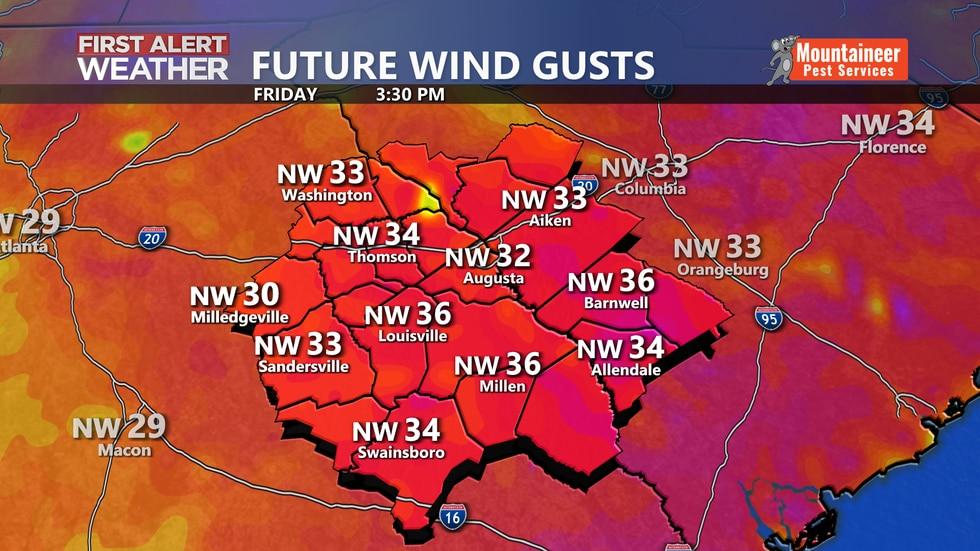 Future Wind Gusts
