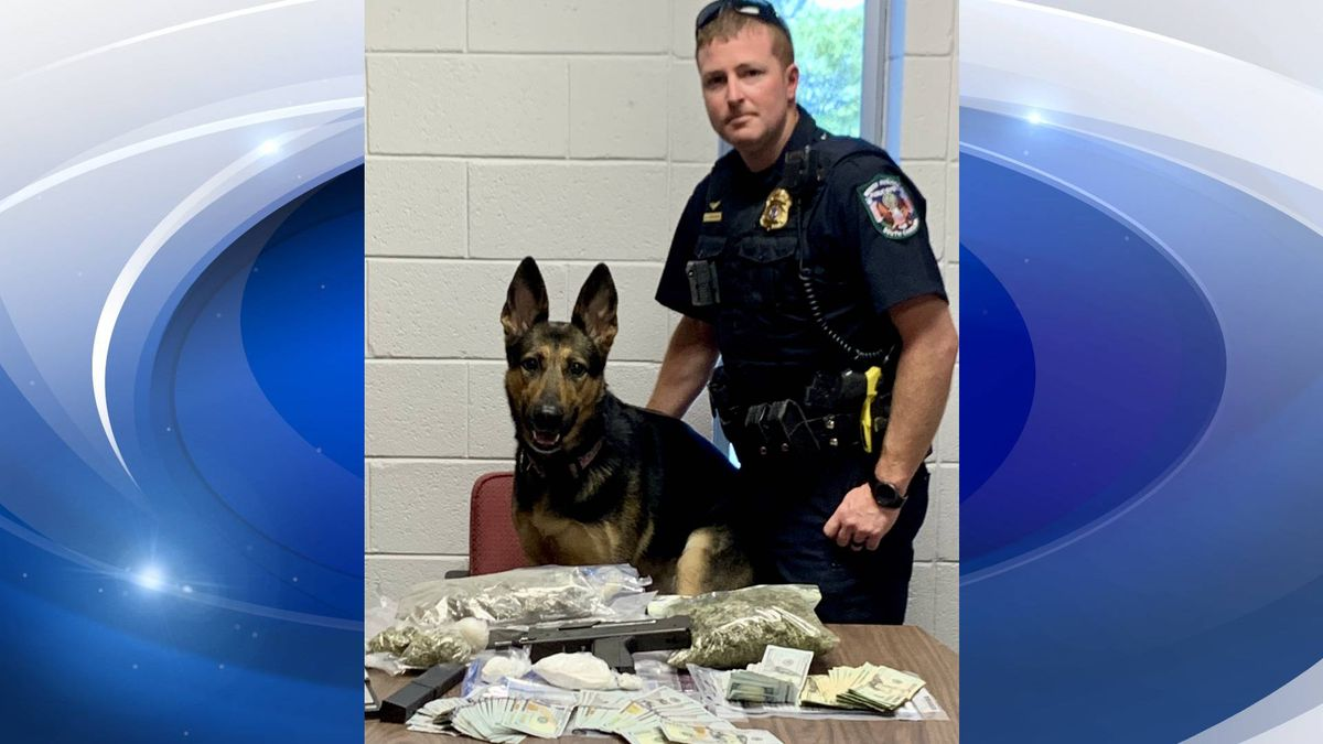 Lucia, the K-9 officer pictured here, helped officers to locate a drug cache during a traffic stop. (Source: North Augusta Department of Public Safety)