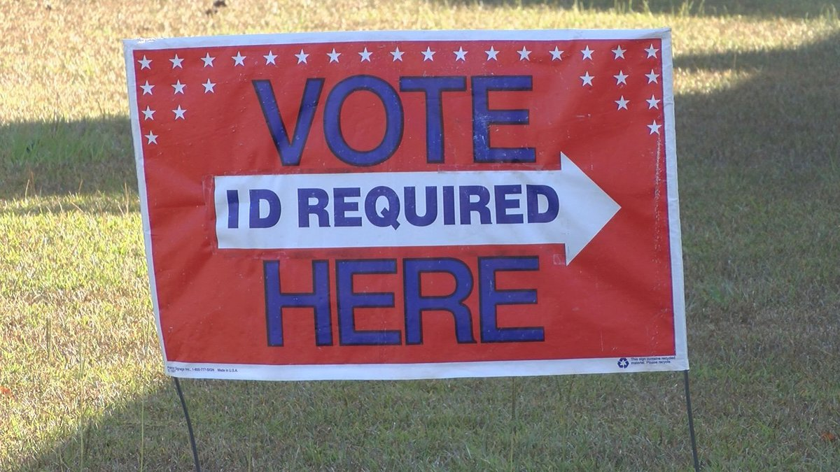 Tuesday marks National Voter Registration Day. (Source:WALB)