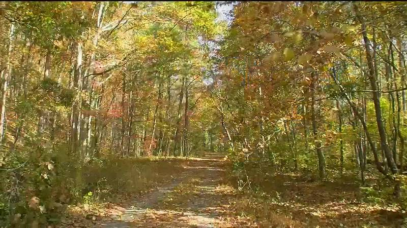 Fall began Wednesday, but it depends on one's definition