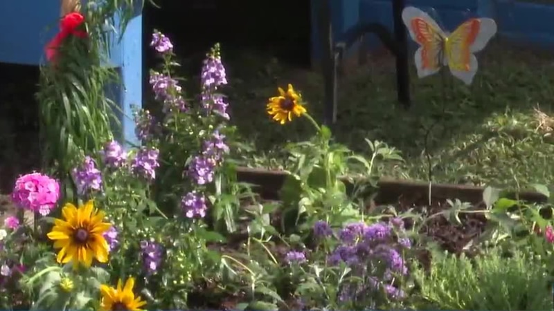 Today Keep Aiken County Beautiful planted a butterfly garden for the brothers and sisters of...