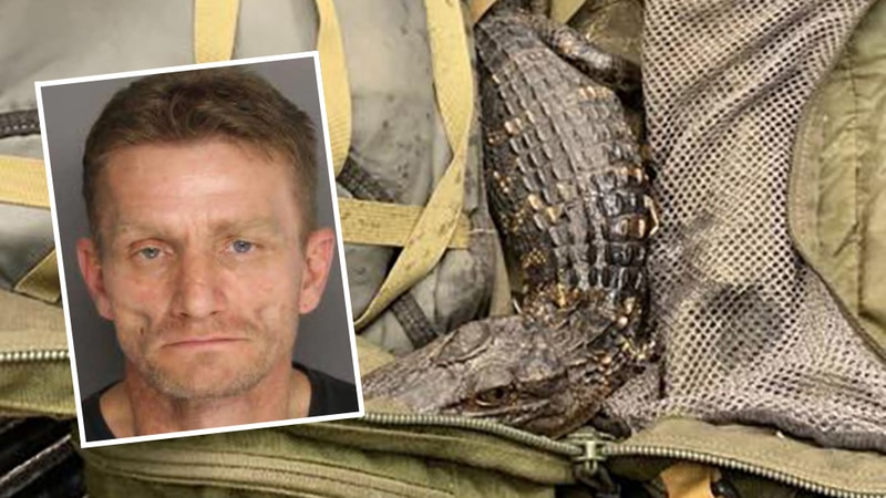 Tracy Lee Crane is wanted by the sheriff's office and SCDNR, and has active warrants for...