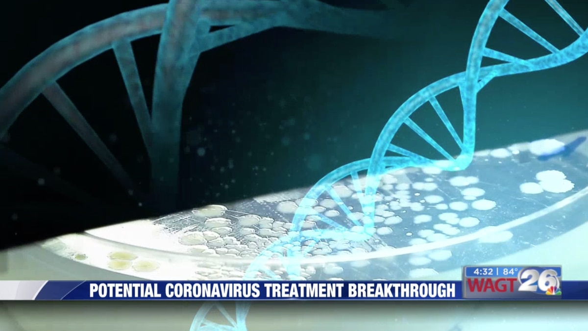 They didn't set out to crack the coronavirus code, but two researchers at the Medical College...